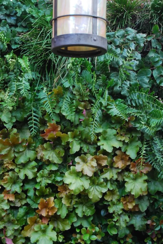 vertical gardens6 How to build a Vertical Garden aka Living Wall