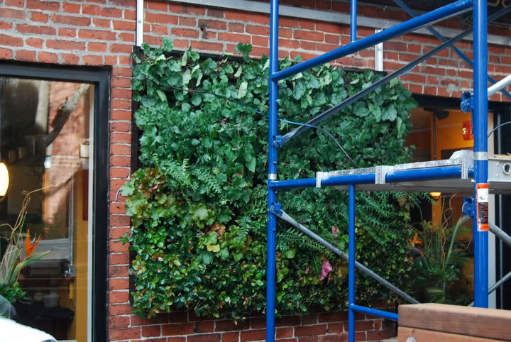 vertical gardens8 How to build a Vertical Garden aka Living Wall