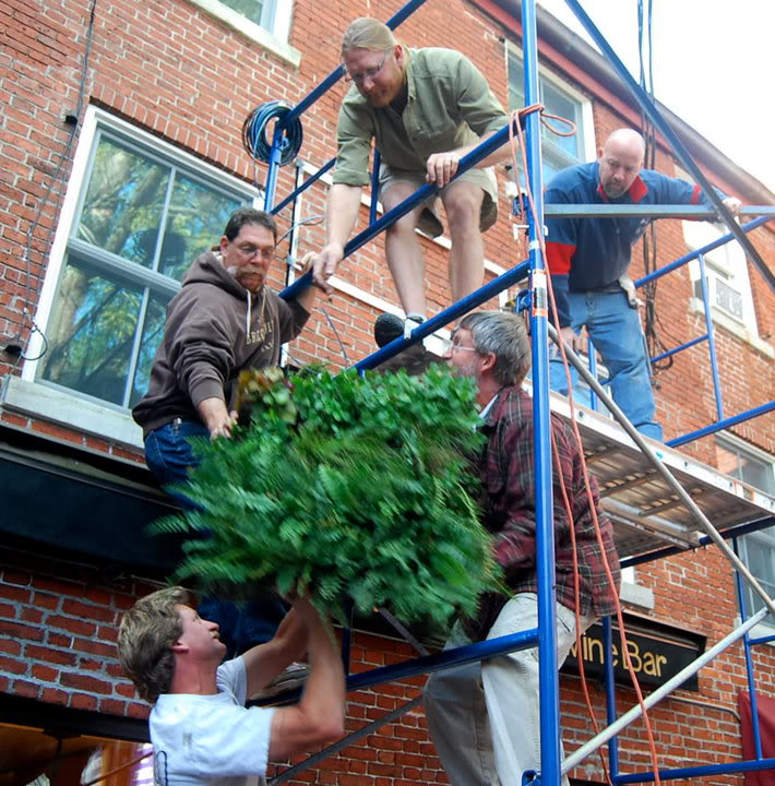 vertical gardens9 How to build a Vertical Garden aka Living Wall