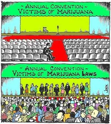 Victims of Marijuana vs. victims...